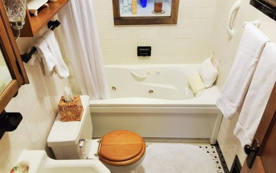 Old Orchard BNB St. Louis 10